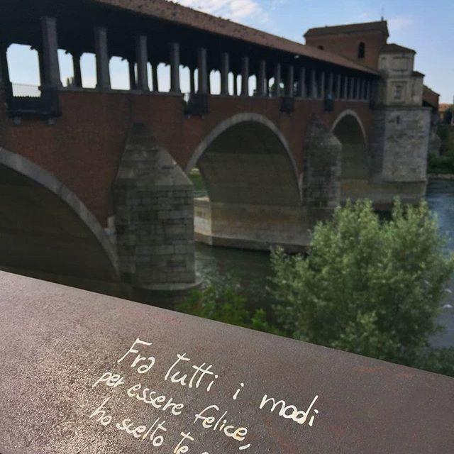 Ponte Coperto Pavia | original history walks tour